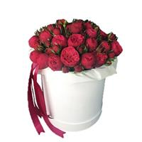 Red peony-shaped roses in a box