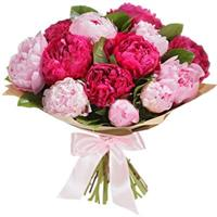 Bouquet of bordon and pink peonies