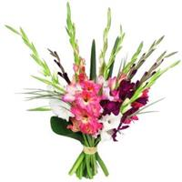 A wonderful bouquet of 11 different colored gladioli