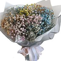 A small bouquet of gypsophila