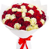 51 red and white rose