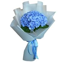 Lovely bouquet of 1 hydrangea