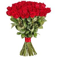 Exquisite bouquet of 51 red importet roses