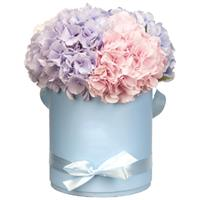 Box with hydrangeas
