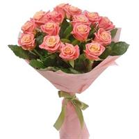 19 magical pink roses