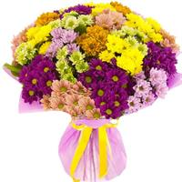15 chrysanthemum