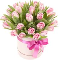 Box with pink tulips