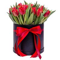 25 red tulips in the box