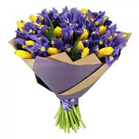 Bouquet of purple irises and yellow tulips