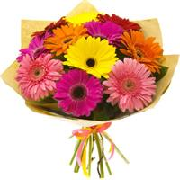 Bouquet of 11 colorful gerberas