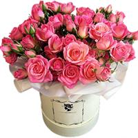 Shrub roses and orchids in basket