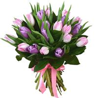 Bouquet of 21 purple and pink tulips