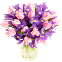 Bouquet of pink tulips and purple irises