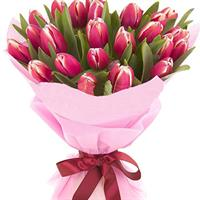 Bouquet of red and pink tulips