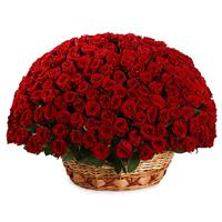 201 red roses in a basket
