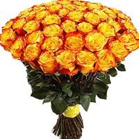 Bouquet of 101 yellow roses imported