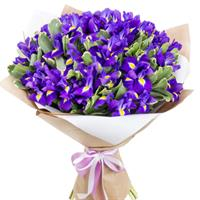 Bouquet of 51 blue iris