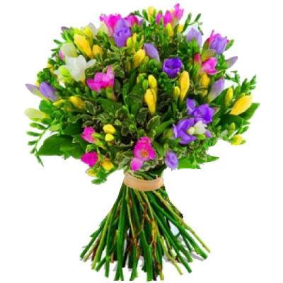 Купить цветы фрезии в киеве букеты на свадьбу оригинальные
