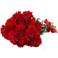 Bouquet of 15 red carnations