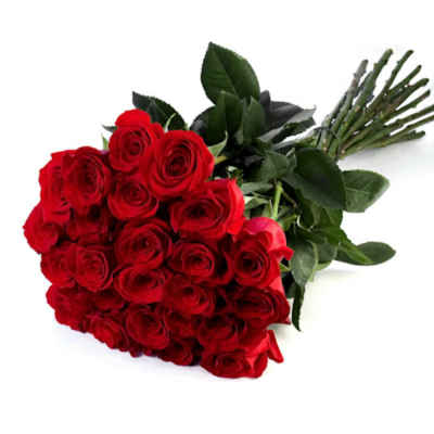 Bouquet of red roses imported