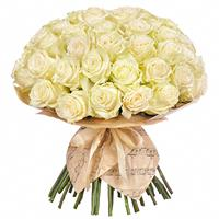 51 a gentle white roses