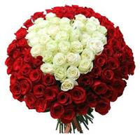 Heart of red and white-colored roses
