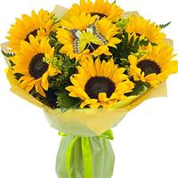 Bouquet of 7 sunflowers