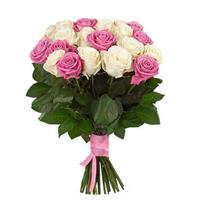 19 roses pink and cream colors