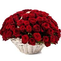 101 red roses in the basket