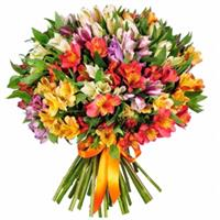 Bouquet of 31 multi-colored alstroemerias