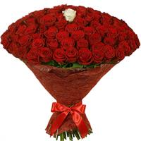 101 red roses and white rose