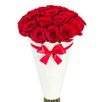 25 red roses in a cone