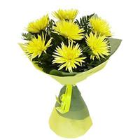 bouquet of 7 yellow chrysanthemums