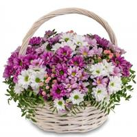 11 yellow chrysanthemums in a basket