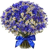 Bouquet of cornflowers and field chamomiles
