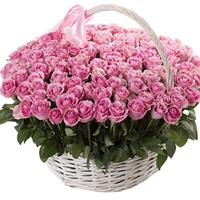 101 pink roses in a basket