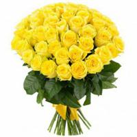 Bouquet of 41 yellow roses