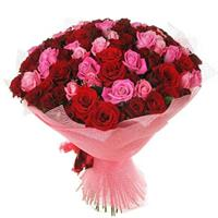 Bouquet of 65 red and pink roses