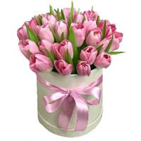 25 multi-colored tulips in a hat box.